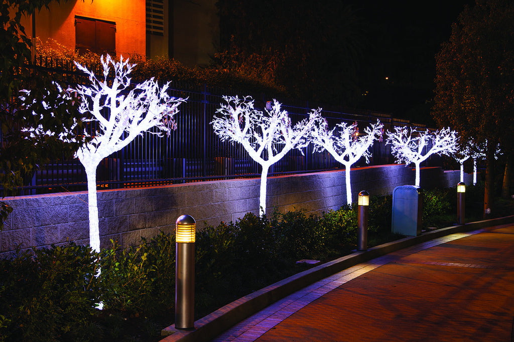 Outdoor Rated LED Acacia Tree Decoration