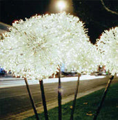Lit Grapevine Sphere Christmas Light Decoration