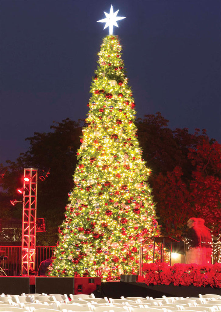 Outdoor Giant Christmas Tree