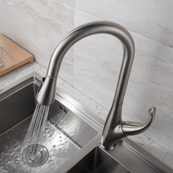 Truly Special Kitchen Faucet