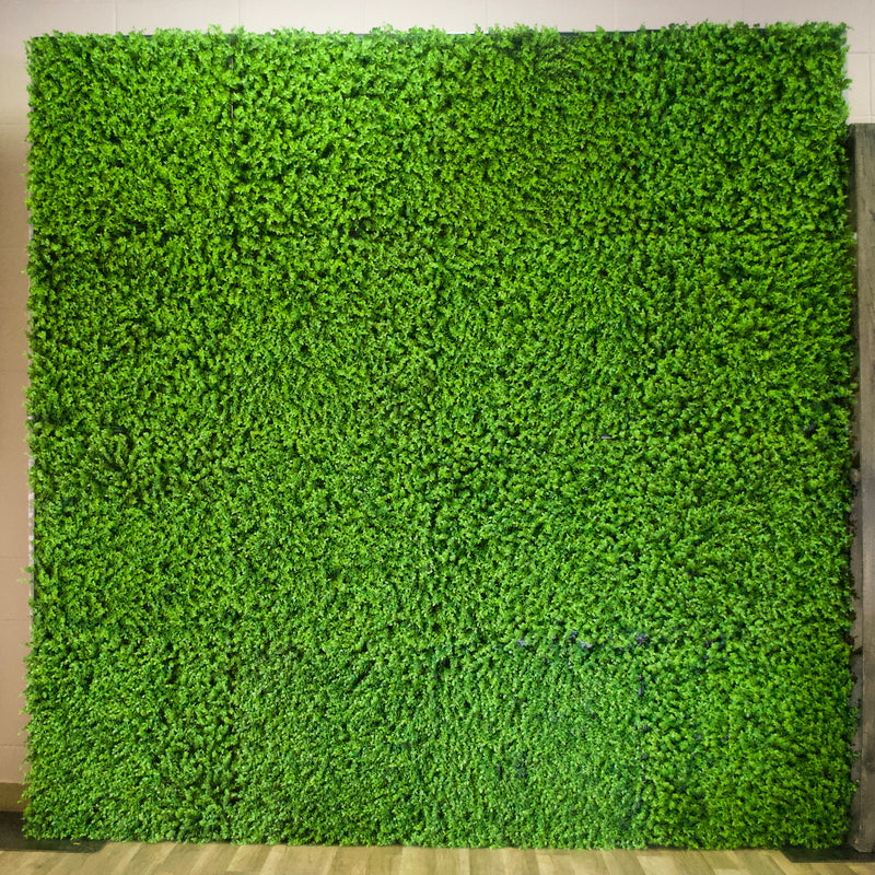 Green Hedge Wall Backdrop