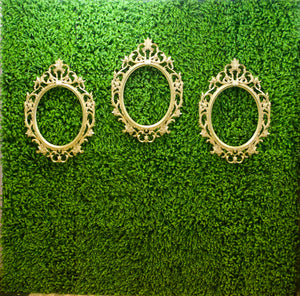 Green Hedge Wall Backdrop with Victorian Mirror Frame