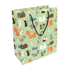 Load image into Gallery viewer, Rex London Large Gift Bag
