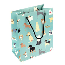 Load image into Gallery viewer, Rex London Small Gift Bag