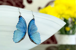 Acdria Blue Morpho Half Wing Large