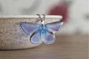 Acdria Common Blue Butterfly Necklace