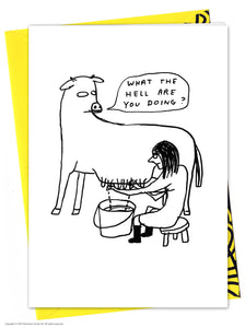 David Shrigley What The Hell Birthday Card