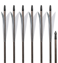 Load image into Gallery viewer, Medieval Arrows - 6 Pack