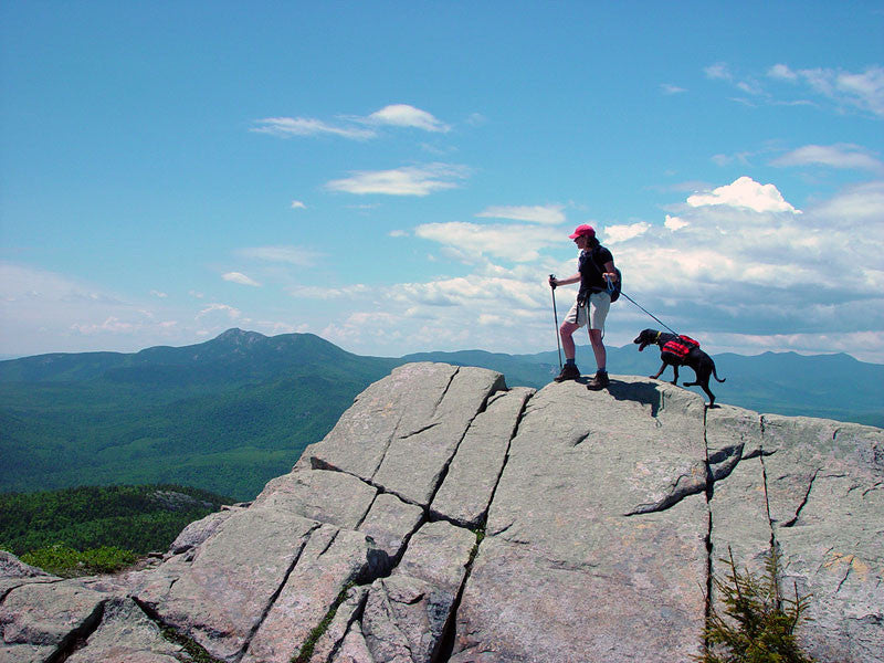 Map maker Angela and Olivia Rose, her coonhound hiking in New Hampshire