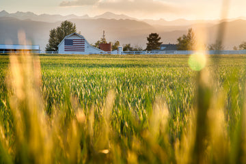 An American flag painted on the side of a farmer's barn at the foothills of Colorado's Rocky Mountains.