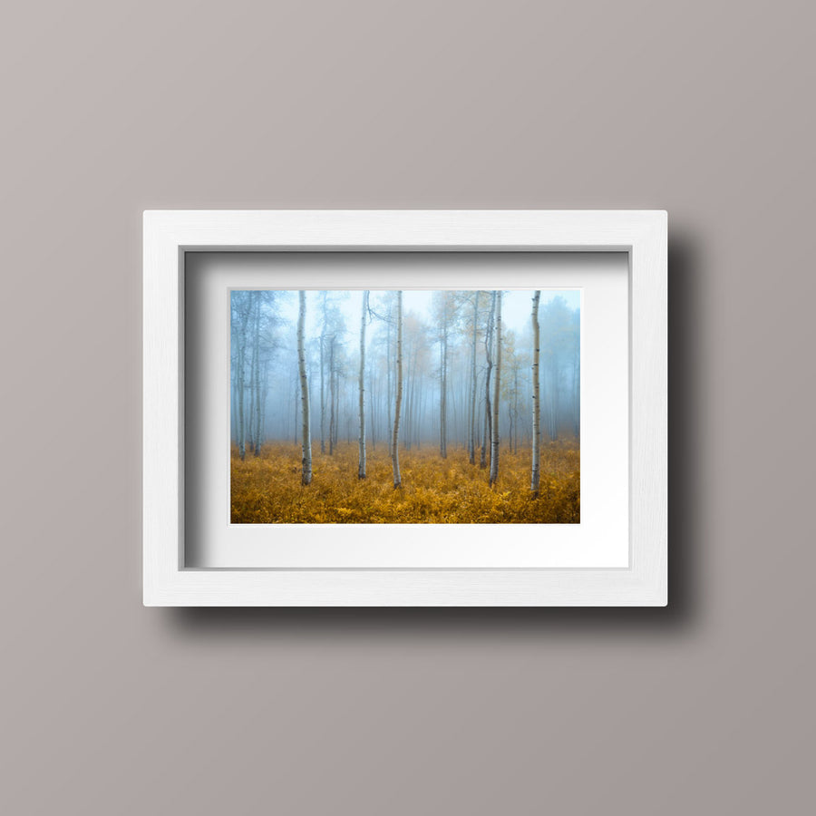 Foggy Autumn Print