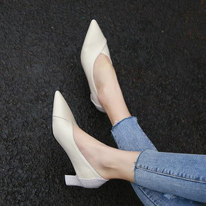 Lady Pointed Toe Shallow Shoes Woman Heels Chunkey Pumps