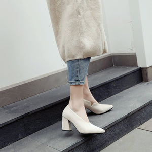 Pointed Toe Chunky Heels Pumps