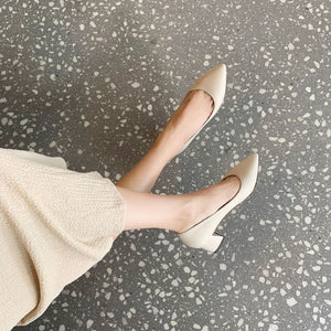 Pointed Toe High Heeled Shallow Block Heel Pumps