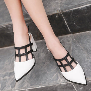 Women Shoes Mix Colored Pointed Toe Buckle Chunky Sandals