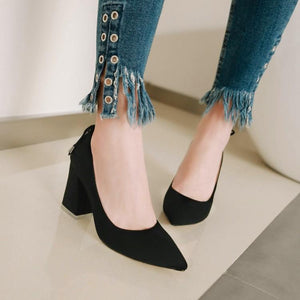 Pointed Toe Women High Heeled Pumps