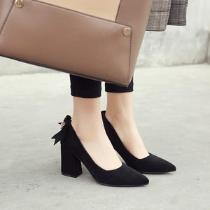 Pointed Toe High Heeled Women Chunky Heels Pumps