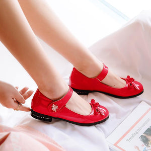 Girls's Shallow Mouth Low Heeled Pumps Pincess Shoes