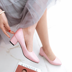 Lady Pointed Toe Shallow Mouth Chunkey Heels Shoes Woman