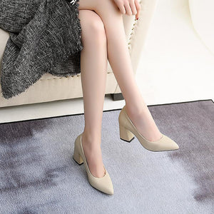 High Heeled Pointed Toe Block Heel Pumps