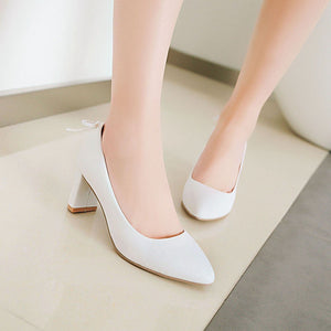 Pointed Toe High Heeled Chunky Heels Pumps
