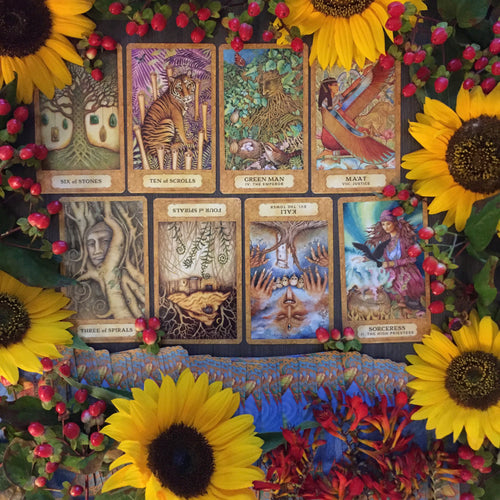 Energy & Elementals Chrysalis Tarot Reading
