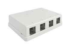Blank Surface Mount Box, 4-Port