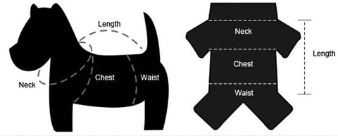 Dog measurement and dog sizing for dog clothes