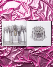 Load image into Gallery viewer, Wim Delvoye Catalogue