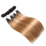 lumiere 1B/27 Ombre Straight Hair 4 Bundles With 4x4 Closure Pre Colored human hair