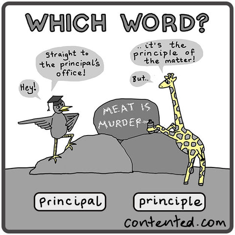 Which word: principle or principal? Writing tip from Contented.com