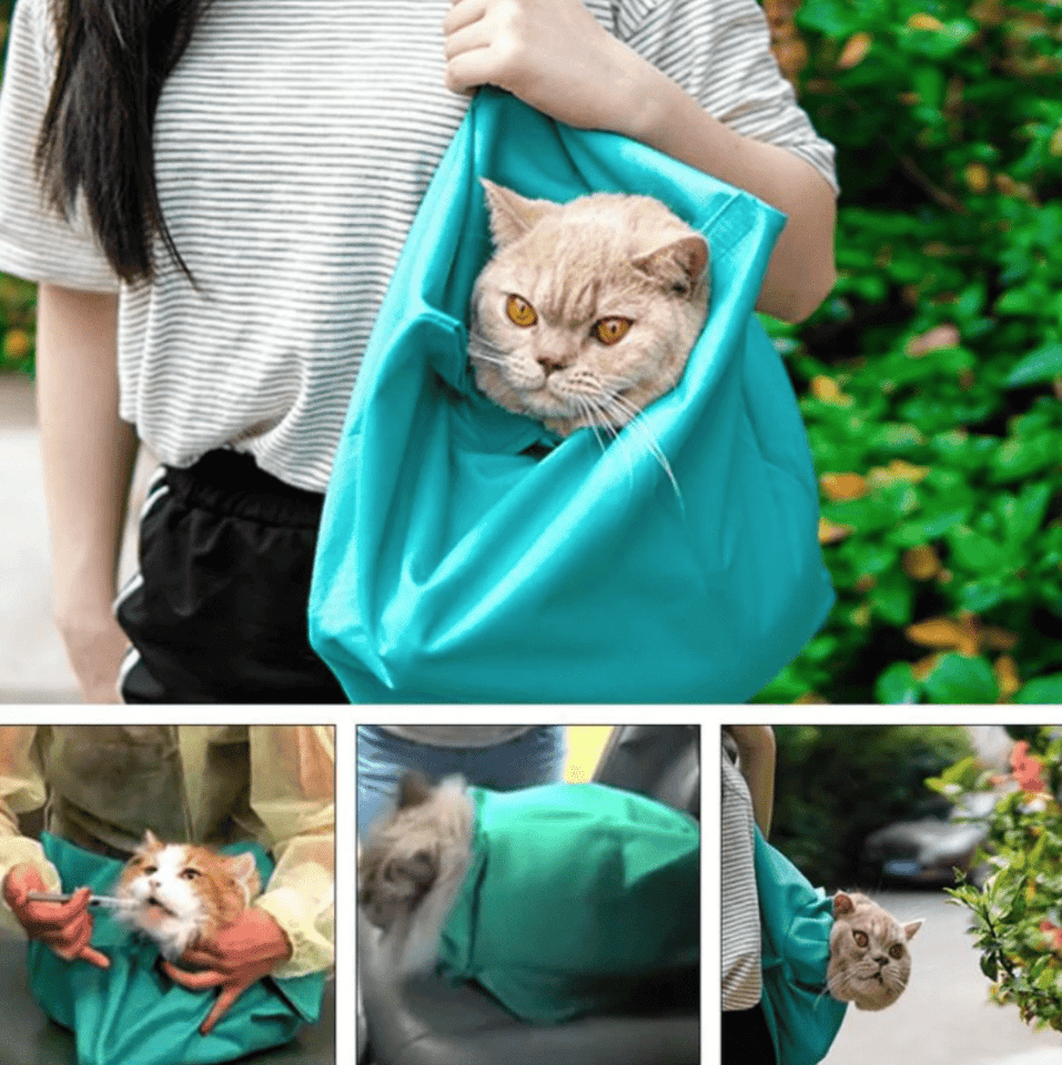 Cat Carrier Pouch Bag Sling Soft Small Pet Carriers Kitten Travel Best