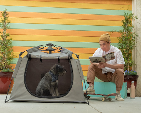 The Best Way to Crate Train Your Dog: The Pop 'N Go® Pets Playpen