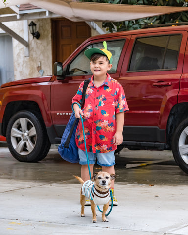 A young boy holding his dog on a leash with the Pop N Go Playpen on his shoulder