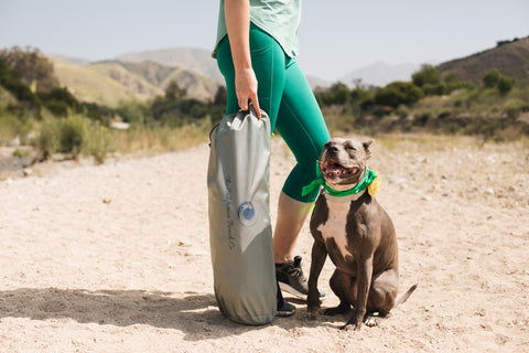 Pet owner carrying the Pop 'N Go Pets Playpen bag with her dog by her side