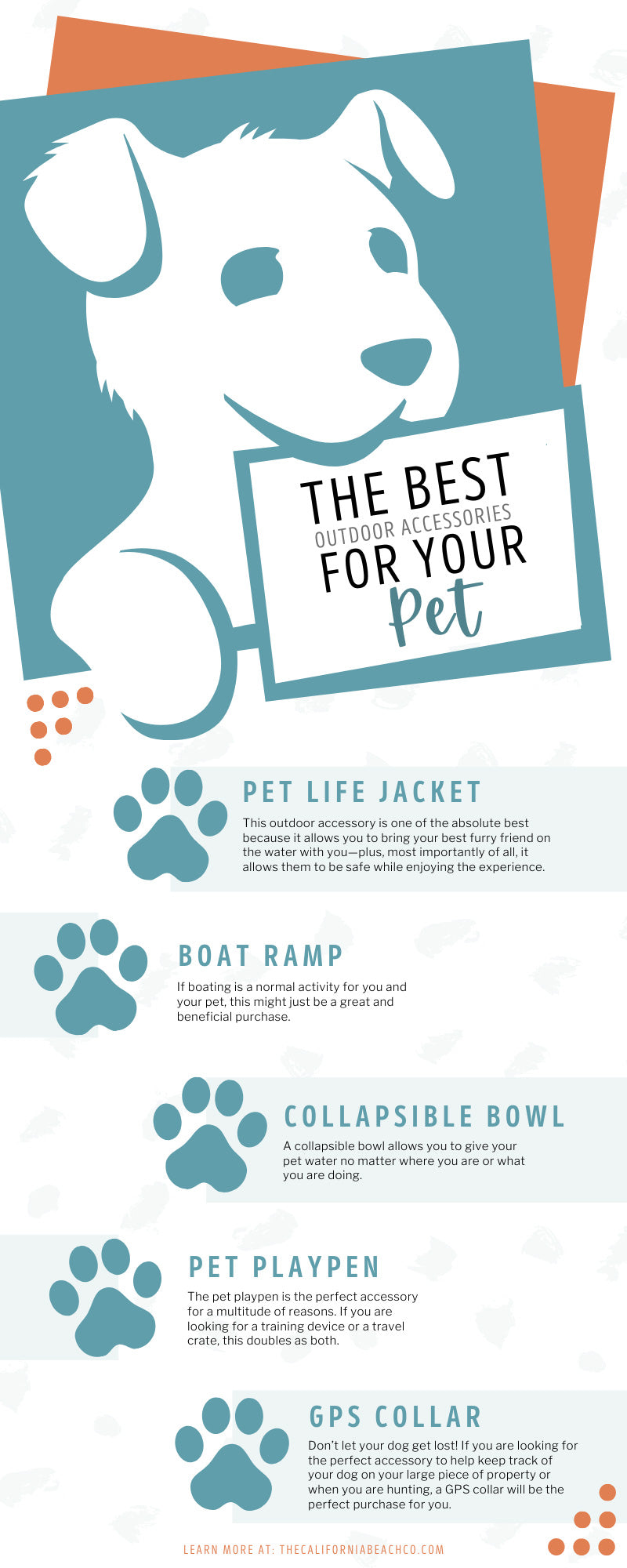 The Best Outdoor Accessories for Your Pet
