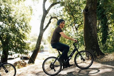GenZe E152 Rec Riser 350w Electric Bicycle