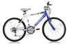 "Image of Micargi M40 24"" Mountain Bike"