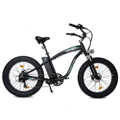 Hammer Electric Bike 1000 Watt Rear Hub Fat Tire Beach Snow - Ecotric