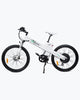 Image of Seagull 1000 Watt Electric Mountain Bicycle MTB - Ecotric