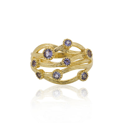 Tanzanite Gemstone Ring 14K Gold - dannynewfeld