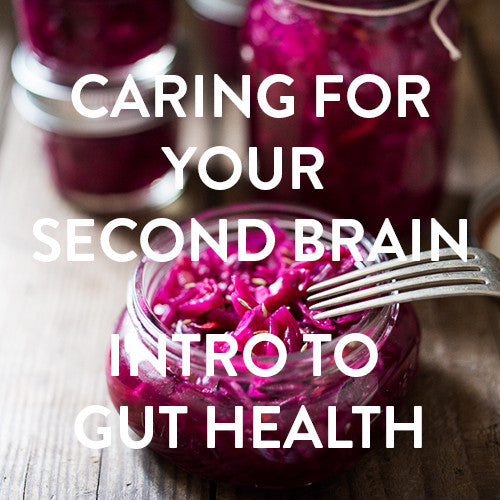 Saturday, July 15th -- Caring For Your Second Brain: Intro to Gut Health