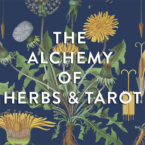 Wednesday, March 22nd-- The Alchemy of Herbs & Tarot