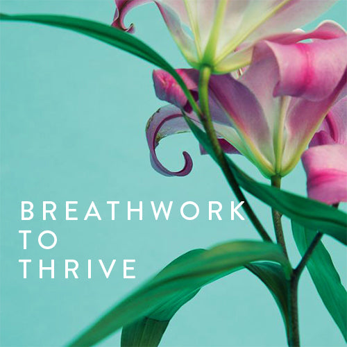 Friday, May 3rd -- Breathwork to Thrive