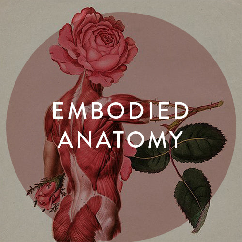 Sundays, March 3rd, 10th, 17th, 31st & April 7th -- Embodied Anatomy