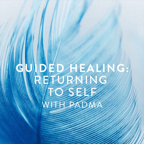 Monday, July 8th-- Guided Healing: Returning to Self