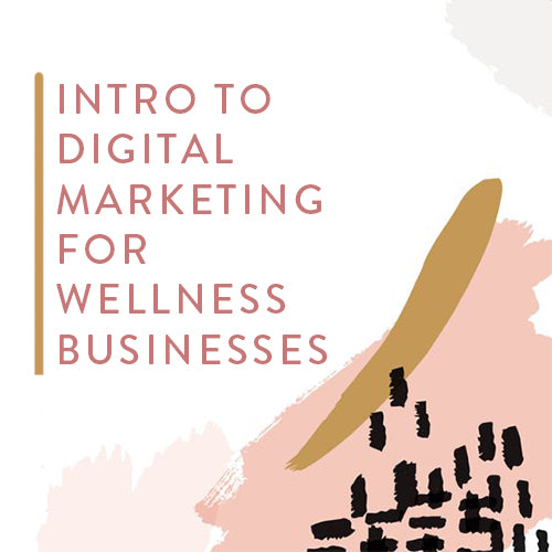 Wednesday, June 26th -- Intro to Digital Marketing for Wellness Businesses