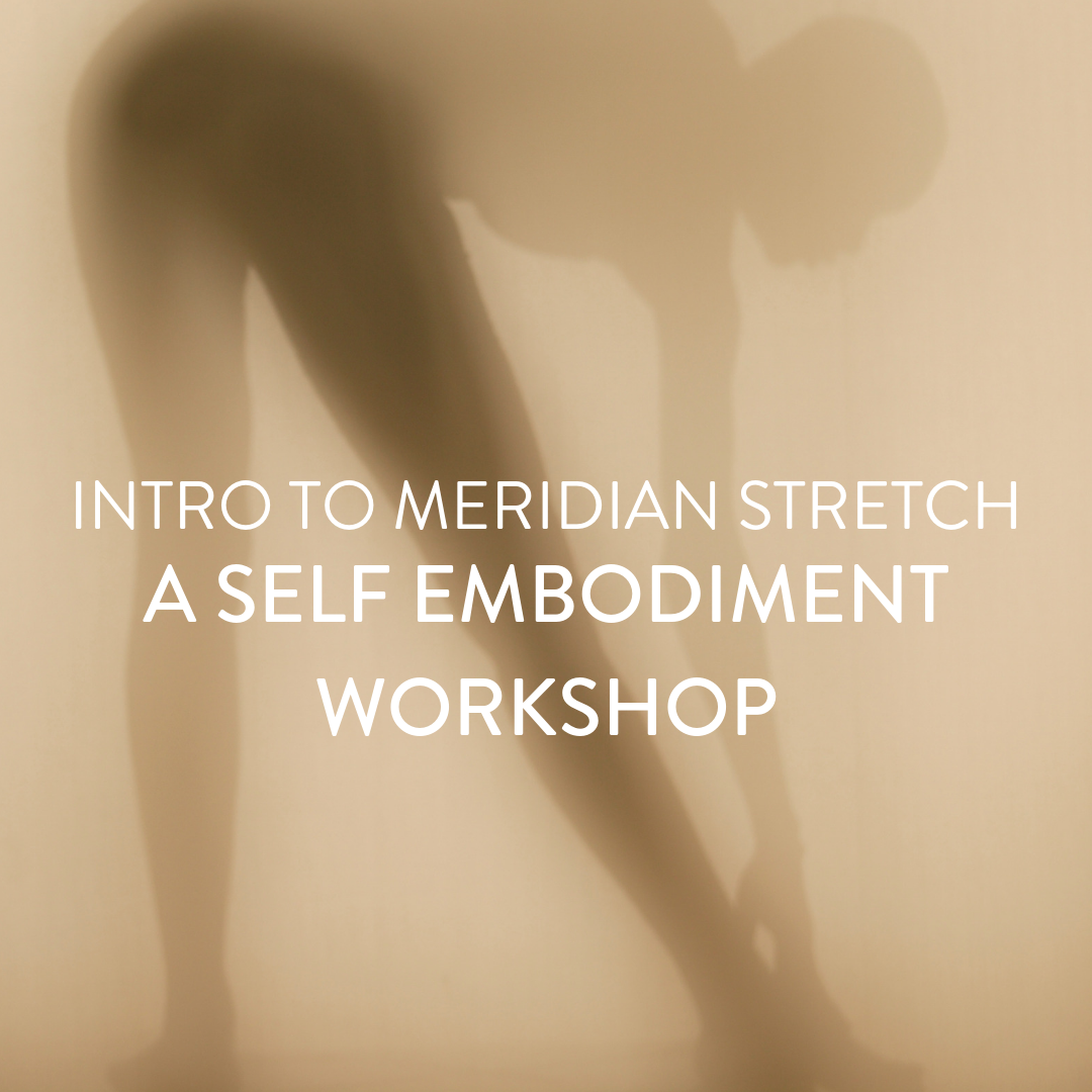Sunday, August 18th -- Intro to Meridian Stretch: A Self Embodiment Workshop