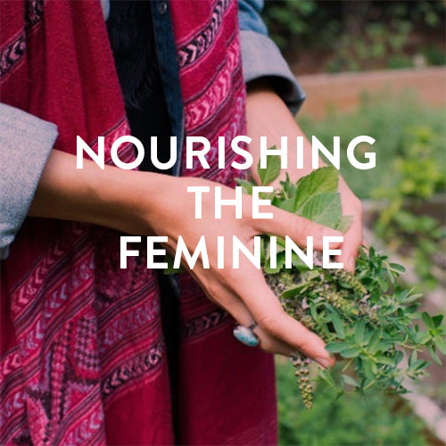 Sunday, November 12th -- Nourishing the Feminine: Plant Medicine & Practices for Feeding the Feminine Body