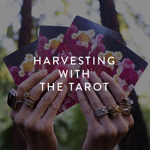 Saturday, September 22nd -- Harvesting with The Tarot